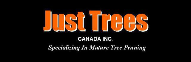 Just Trees Canada Inc.-Specializing-in-mature-tree-pruning-edmonton